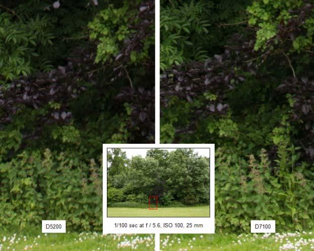 خرید دوربین D7100