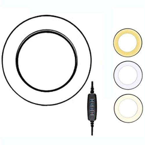 Ring Light 6 Inch table